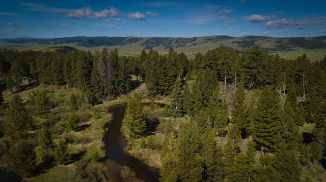 Tract E1 Skyview Lane, Philipsburg, MT 59858 (MLS #22008030) :: Andy O Realty Group