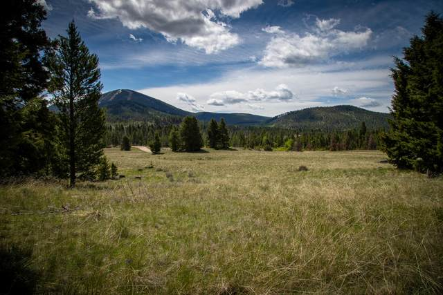 Nhn Rumsey Road, Philipsburg, MT 59858 (MLS #22008129) :: Andy O Realty Group