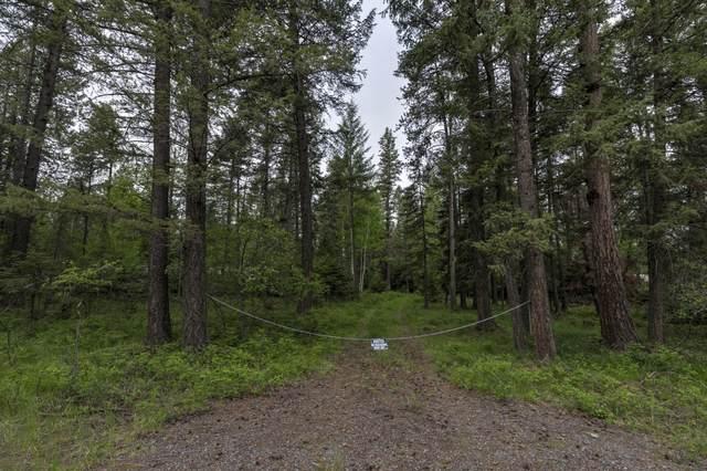 543 Trinkus Lane, Bigfork, MT 59911 (MLS #22008227) :: Montana Life Real Estate