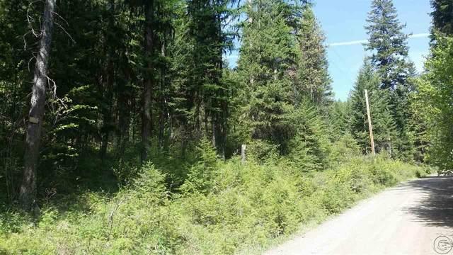 135 W Mountain Creek Road, Alberton, MT 59820 (MLS #22008483) :: Performance Real Estate