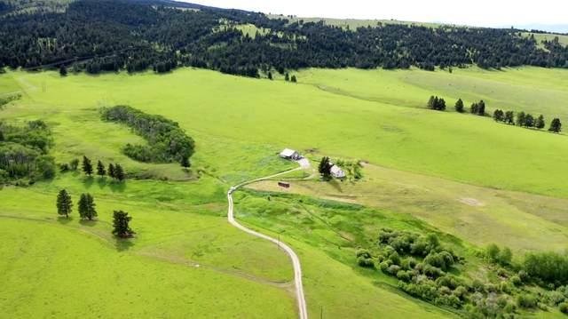 2261 S Mullan Trail Road, Gold Creek, MT 59733 (MLS #22009650) :: Andy O Realty Group