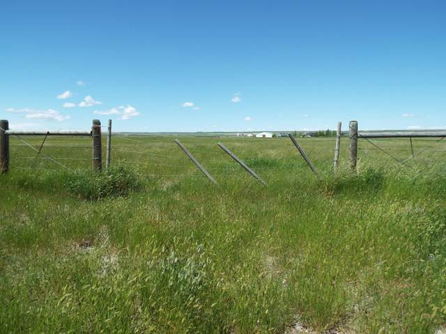 Nhn Curlew's Nest Subdivision, Choteau, MT 59422 (MLS #22009745) :: Performance Real Estate