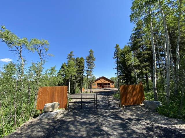 117 Heart Butte Cutoff, East Glacier Park, MT 59434 (MLS #22010224) :: Dahlquist Realtors