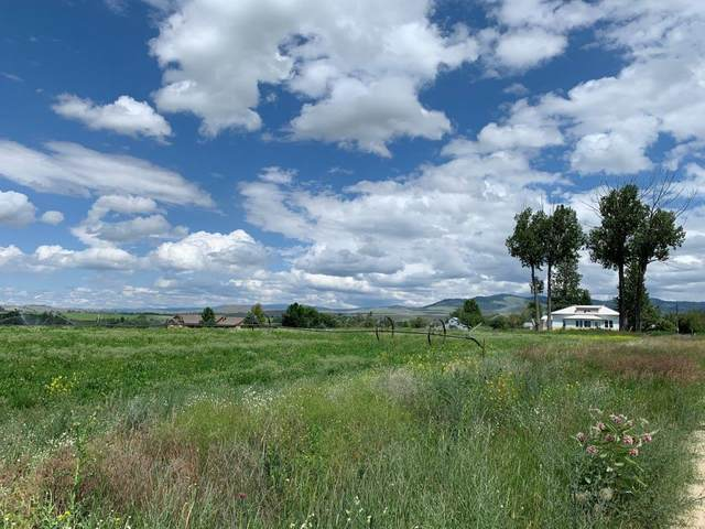 Nhn Thousand Acres Road, Corvallis, MT 59828 (MLS #22010271) :: Dahlquist Realtors