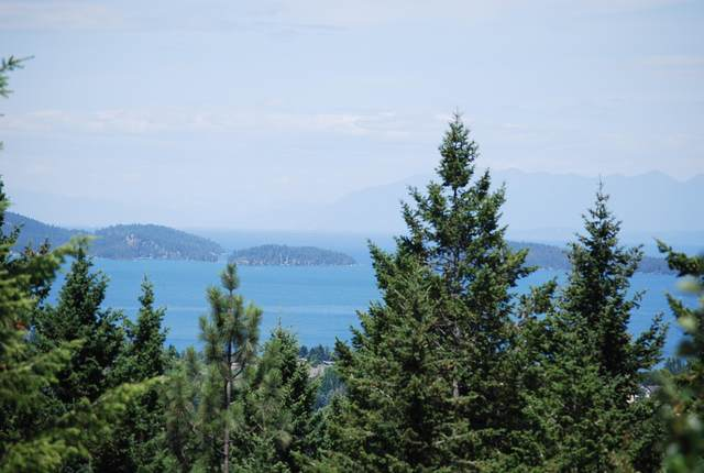 115 Southlake Crest, Polson, MT 59860 (MLS #22010604) :: Whitefish Escapes Realty