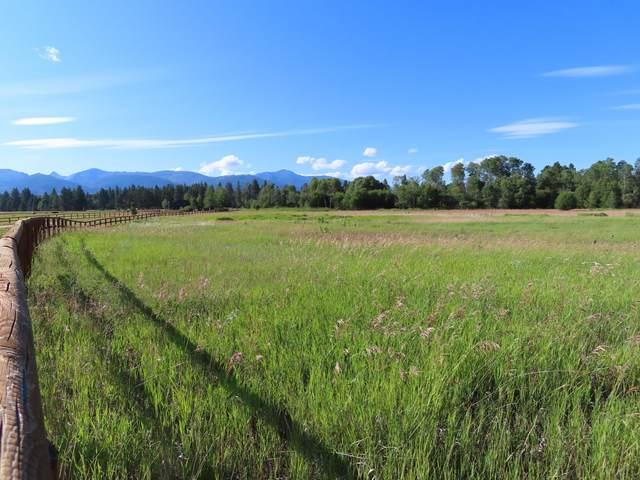 254 Hillside Ranch Road, Victor, MT 59875 (MLS #22011408) :: Performance Real Estate