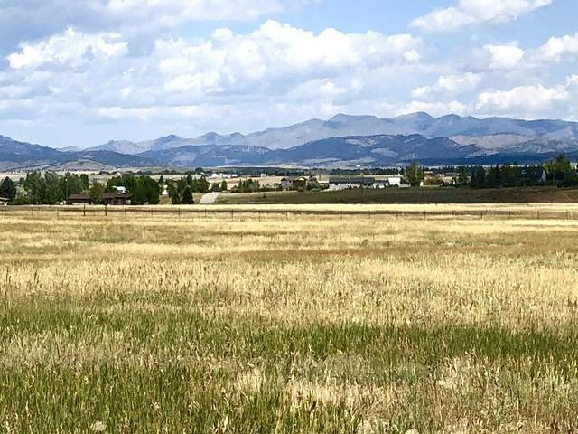 4150 Long Shot Court, East Helena, MT 59635 (MLS #22011511) :: Whitefish Escapes Realty