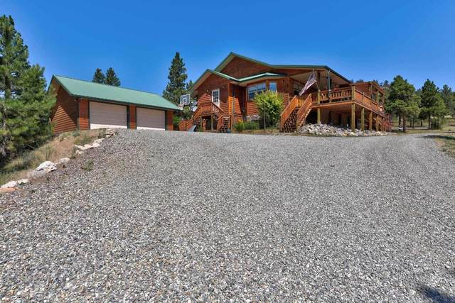 3190 Mountain Meadows Road, Helena, MT 59602 (MLS #22011625) :: Performance Real Estate