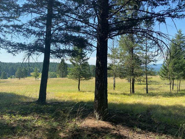 Lot 38 Forest Loop, Fortine, MT 59918 (MLS #22011707) :: Whitefish Escapes Realty