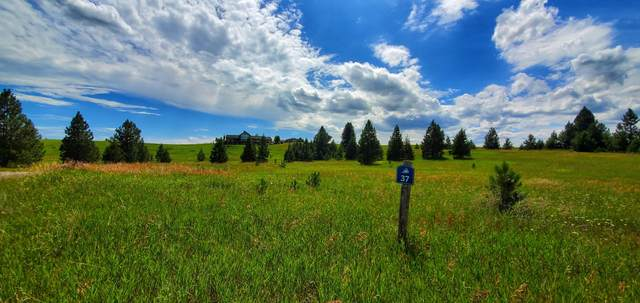 Lot 37 Southlake Crest, Polson, MT 59860 (MLS #22012336) :: Performance Real Estate