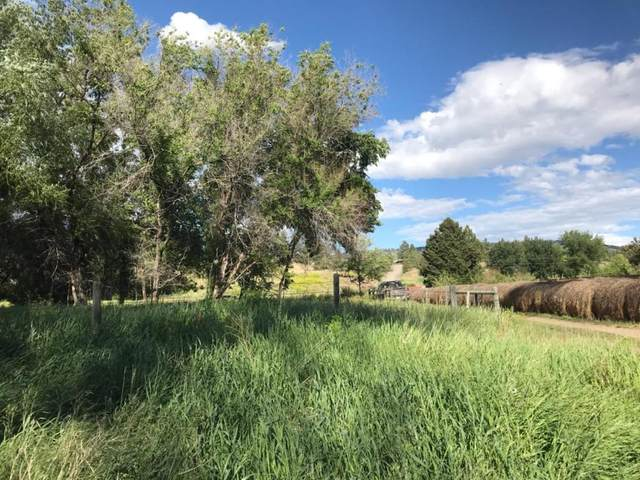 2800 Spokane Creek Road, East Helena, MT 59635 (MLS #22012478) :: Performance Real Estate