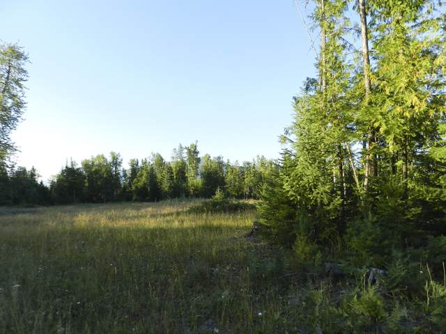 Nhn Ridge Loop Road, Trout Creek, MT 59874 (MLS #22012693) :: Whitefish Escapes Realty
