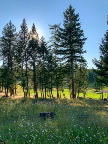 830 Upland Road, Fortine, MT 59918 (MLS #22012704) :: Performance Real Estate