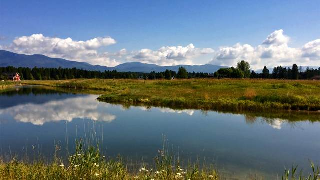 4092 Red Eagle Drive, Whitefish, MT 59937 (MLS #22012801) :: Performance Real Estate
