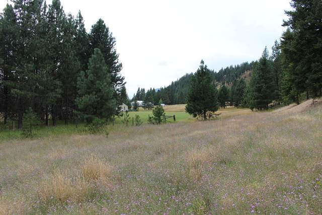 Nhn Larch Lane, Saint Regis, MT 59866 (MLS #22012848) :: Performance Real Estate
