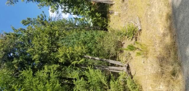 65 Cherub Lake Road, Troy, MT 59935 (MLS #22014431) :: Montana Life Real Estate