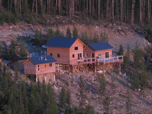 35 Buena Way, Philipsburg, MT 59858 (MLS #22014605) :: Peak Property Advisors
