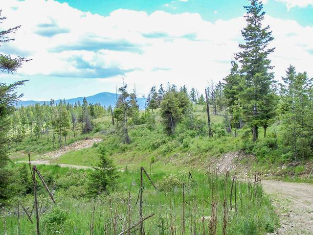 Nhn ''Elk'' Bugler Trail, Kila, MT 59920 (MLS #22014800) :: Performance Real Estate