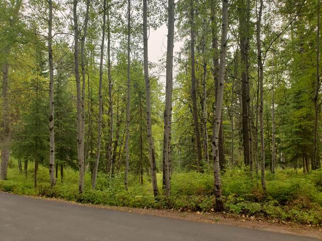 123 Little Mountain Road, Whitefish, MT 59937 (MLS #22015004) :: Whitefish Escapes Realty