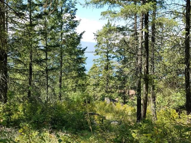 304 Whisper Ridge Drive, Bigfork, MT 59911 (MLS #22015041) :: Dahlquist Realtors