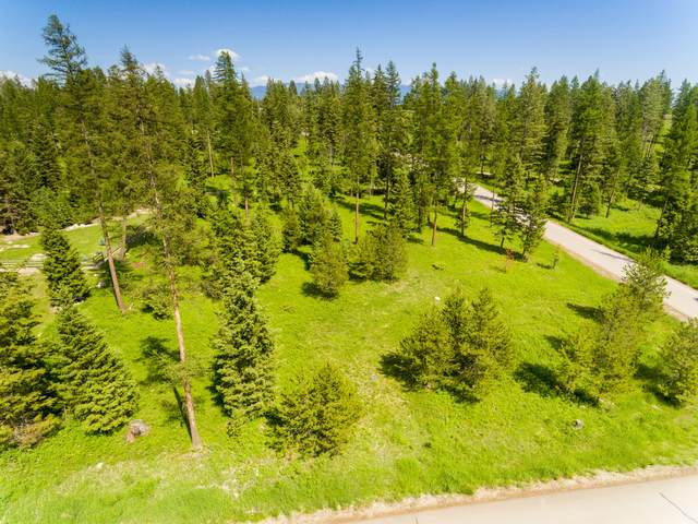 Nhn Timbered Terrace, Whitefish, MT 59937 (MLS #22015491) :: Montana Life Real Estate