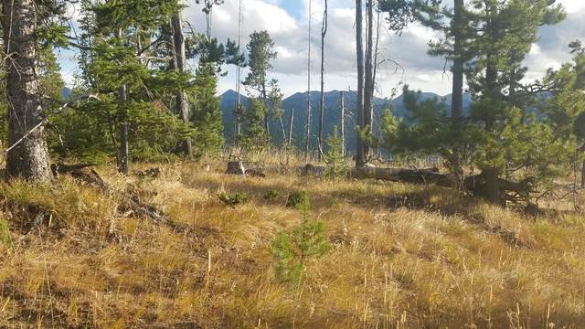 Nhn Old Georgetown Road, Anaconda, MT 59711 (MLS #22015704) :: Whitefish Escapes Realty