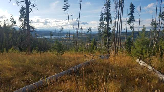 Nhn Old Georgetown Road, Anaconda, MT 59711 (MLS #22015705) :: Whitefish Escapes Realty