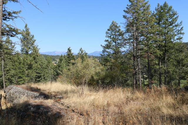 175 Aerie Place, Bigfork, MT 59911 (MLS #22015986) :: Whitefish Escapes Realty