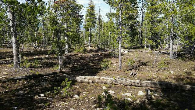 Lot 83a Rosa Trail, Anaconda, MT 59711 (MLS #22016186) :: Whitefish Escapes Realty
