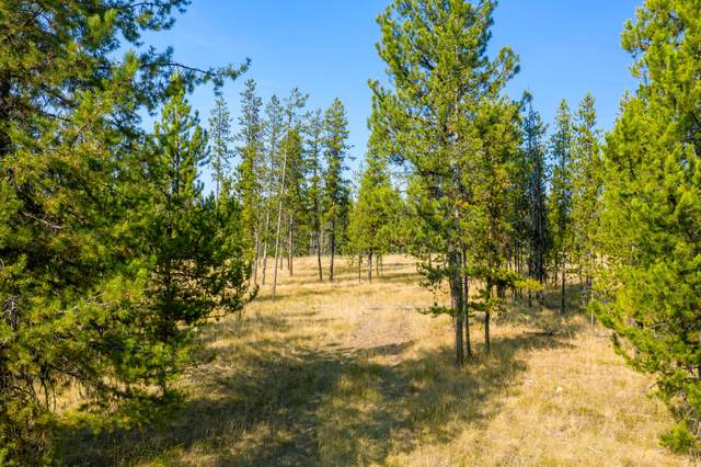 210 Grayling Drive, Seeley Lake, MT 59868 (MLS #22016294) :: Whitefish Escapes Realty