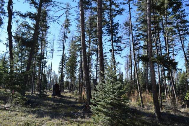 283 Whitefish Drive, Seeley Lake, MT 59868 (MLS #22016297) :: Whitefish Escapes Realty