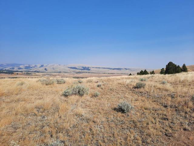 116 Mountain View Trail, White Sulphur Springs, MT 59645 (MLS #22016401) :: Performance Real Estate