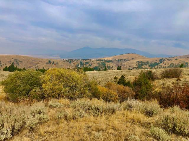Tbd Ross Gulch Road, Townsend, MT 59644 (MLS #22016578) :: Montana Life Real Estate