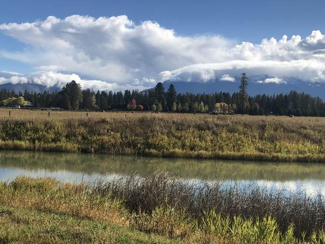 4977 Flatwater Drive, Whitefish, MT 59937 (MLS #22016586) :: Montana Life Real Estate