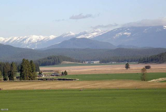 208 Harvest View Lane, Kalispell, MT 59901 (MLS #22016597) :: Whitefish Escapes Realty