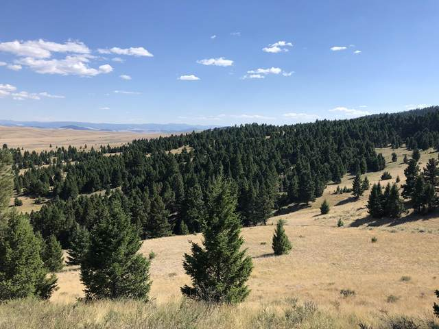 Nhn Mt Highway 141, Avon, MT 59713 (MLS #22016782) :: Whitefish Escapes Realty
