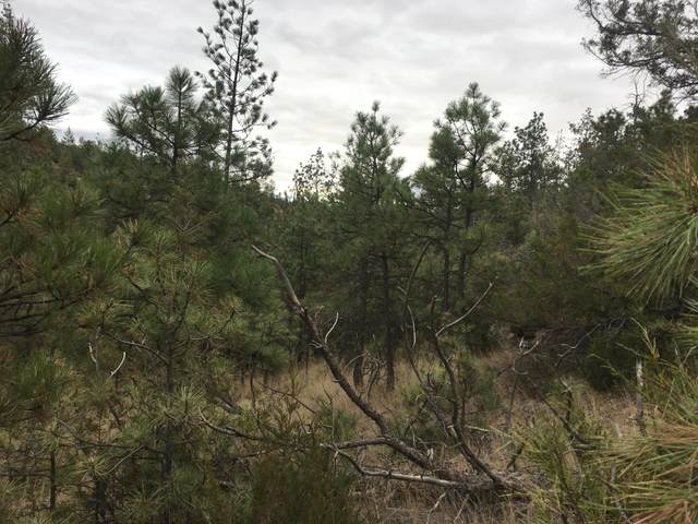 5830 Hauser Dam Road, Helena, MT 59602 (MLS #22016918) :: Whitefish Escapes Realty
