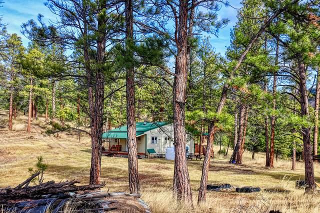 151 Bear Tracks Road, Drummond, MT 59832 (MLS #22017013) :: Performance Real Estate