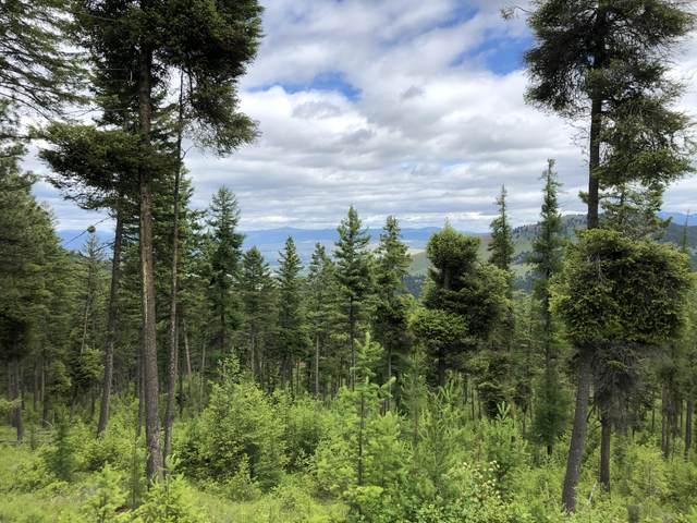 Nhn Tract 3 Larch Camp Road, Missoula, MT 59803 (MLS #22017109) :: Montana Life Real Estate