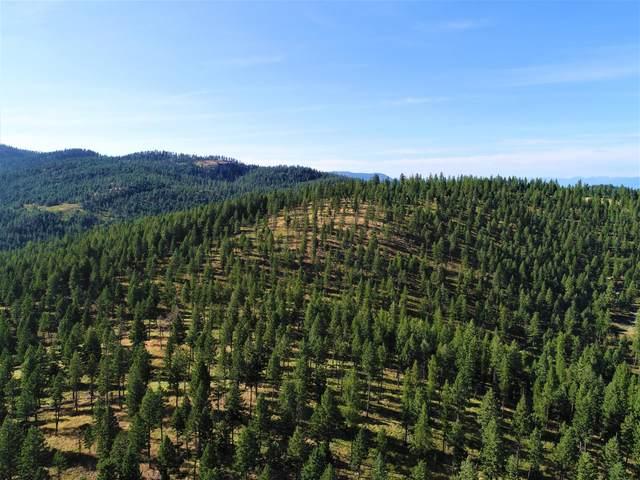 710 Spruce Hollow Trail, Kalispell, MT 59901 (MLS #22017180) :: Dahlquist Realtors