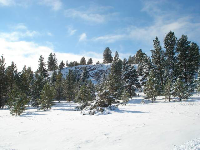 To Be Det South Hills Road, Montana City, MT 59634 (MLS #22017330) :: Andy O Realty Group