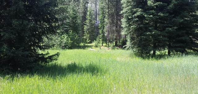 Lot 1 Champion Haul Road, Libby, MT 59923 (MLS #22017551) :: Montana Life Real Estate