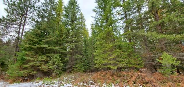 Nhn One Eye Lane, Heron, MT 59844 (MLS #22018060) :: Montana Life Real Estate