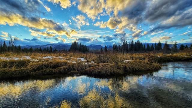 42317 Us Hwy 83 S, Bigfork, MT 59911 (MLS #22018074) :: Montana Life Real Estate