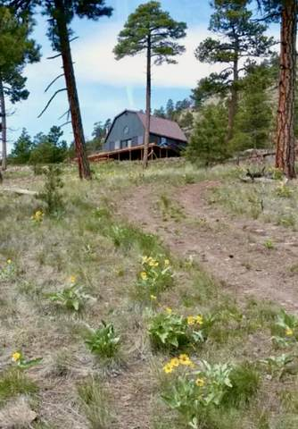 39 Pryor Creek Lane, Cascade, MT 59421 (MLS #22018270) :: Andy O Realty Group