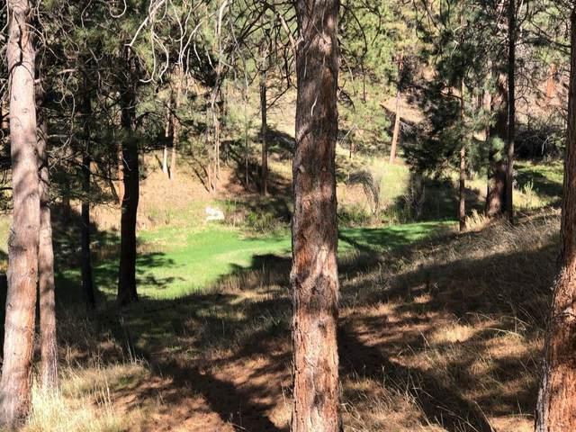 1256 Sheep Creek Road, Stevensville, MT 59870 (MLS #22018453) :: Performance Real Estate