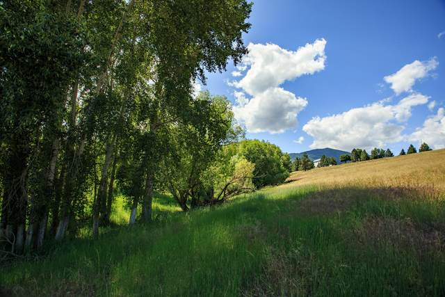 Nhn Sweathouse Road, Victor, MT 59875 (MLS #22100710) :: Performance Real Estate