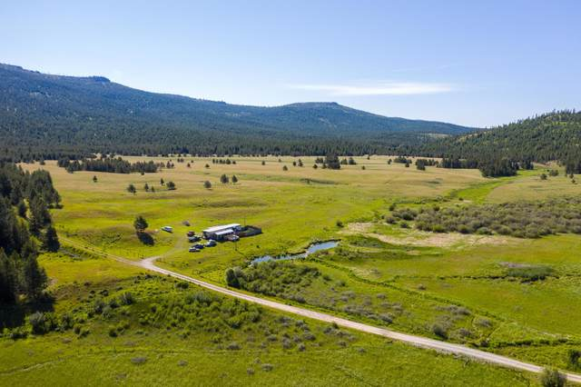 222 Sickler Creek Road, Marion, MT 59925 (MLS #22100796) :: Andy O Realty Group