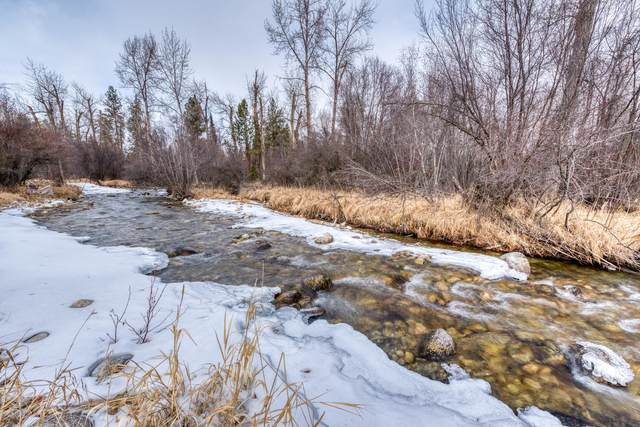 528 Moose Hollow Road, Victor, MT 59875 (MLS #22100940) :: Performance Real Estate