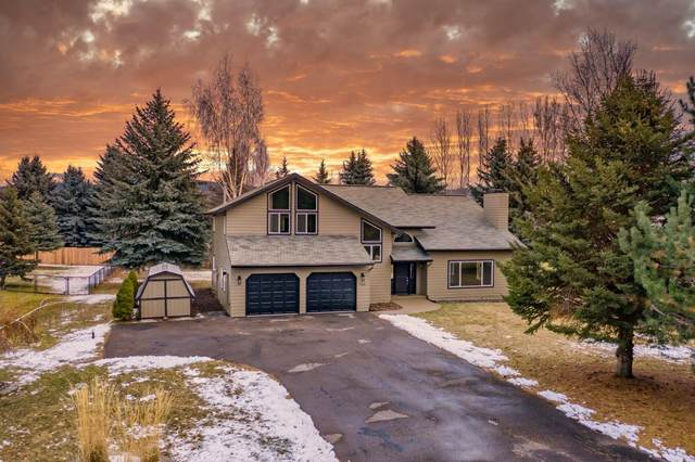 163 Crestview Drive, Bigfork, MT 59911 (MLS #22100994) :: Dahlquist Realtors